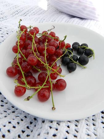 domowy kisiel przepis czarna i czerwona porzeczka