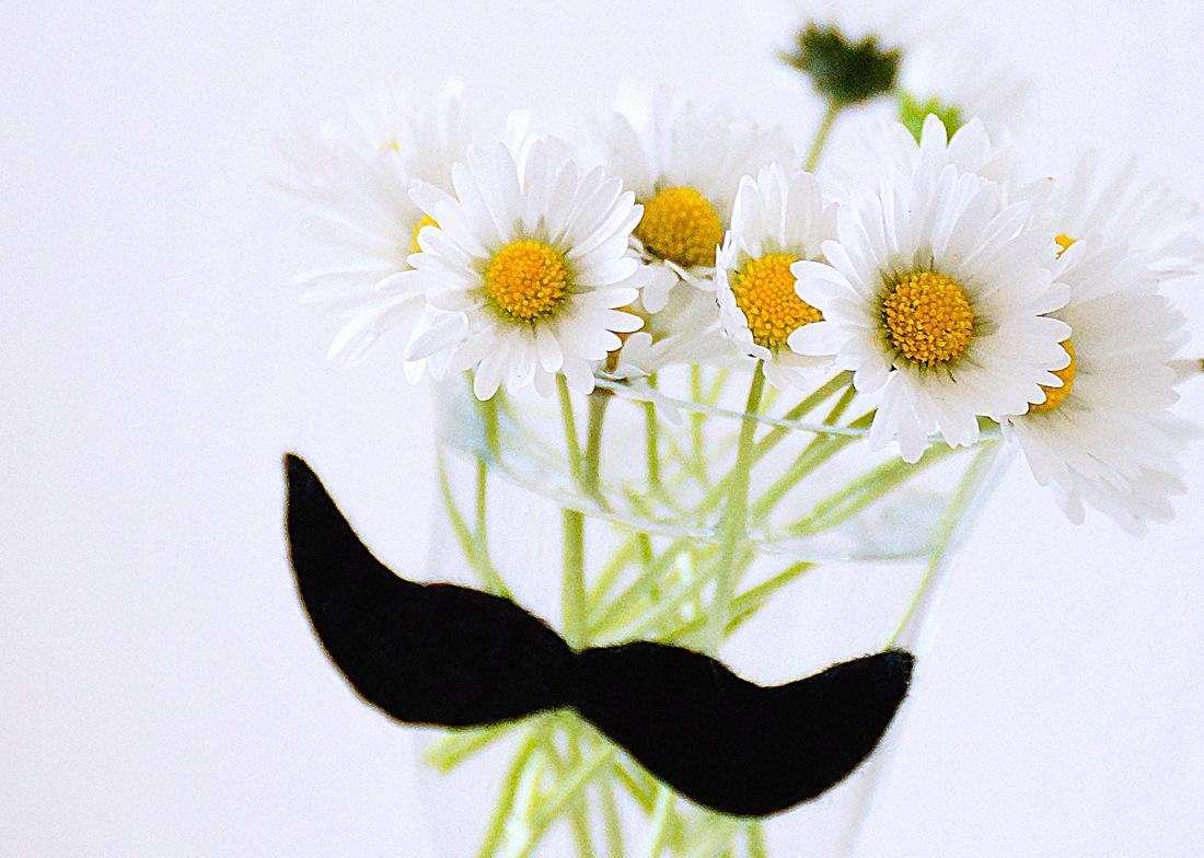 Wazon z wąsami DIY czyli kwiaty na wesoło. Ciekawy motyw z filcu.