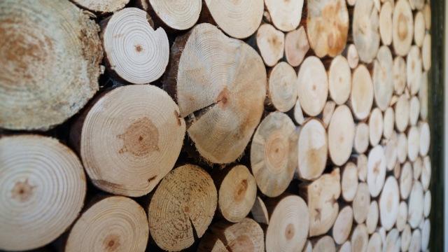 drewniane panele ścienne zbliżenie