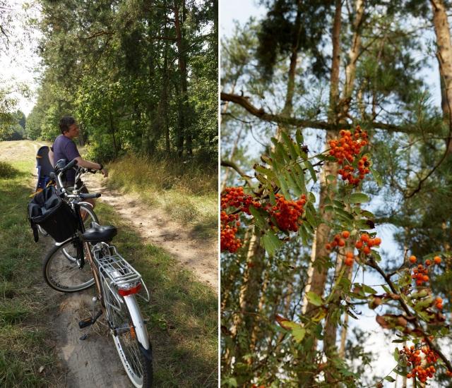 podlasie rowerem, z dzieckiem, bez pośpiechu, naturalnie - haart.pl blog diy zrób to sam 5