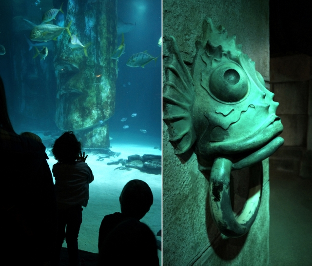 Sea Life London Aquarium - oceanarium w sercu brytyjskiej stolicy londyn - haart.pl blog diy zrób to sam 3