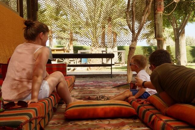 cypr atrakcje dla dzieci, camel park niedaleko larnaki