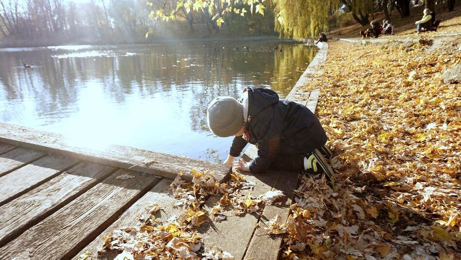 jesień w parku szczęśliwickim warszawa