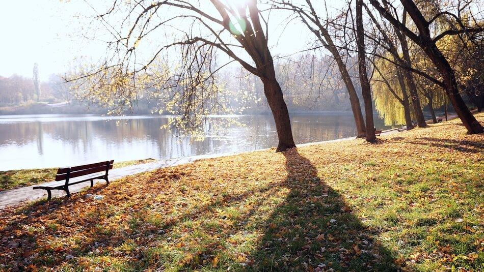 park szczęśliwicki jesienią