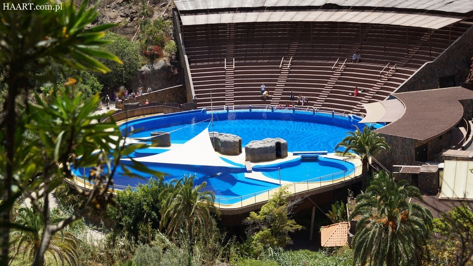 urlop na gran canaria ile kosztują 2 tygodnie na własną rękę hiszpania wyspy kanaryjskie palmitos park delfinarium - haart.pl blog diy zrób to sam 19