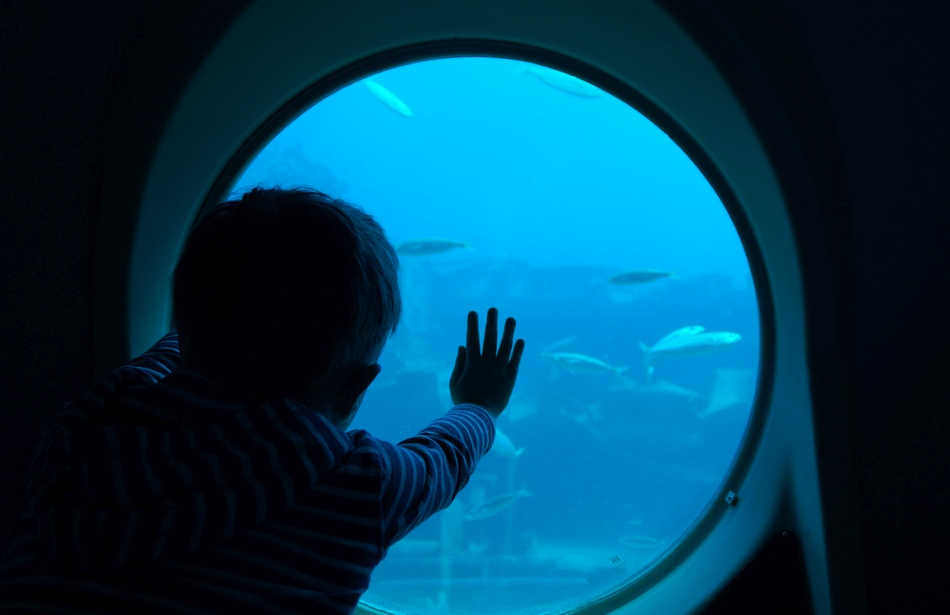 urlop na gran canaria ile kosztują 2 tygodnie na własną rękę hiszpania wyspy kanaryjskie łódź podwodna rejs - haart.pl blog diy zrób to sam 17