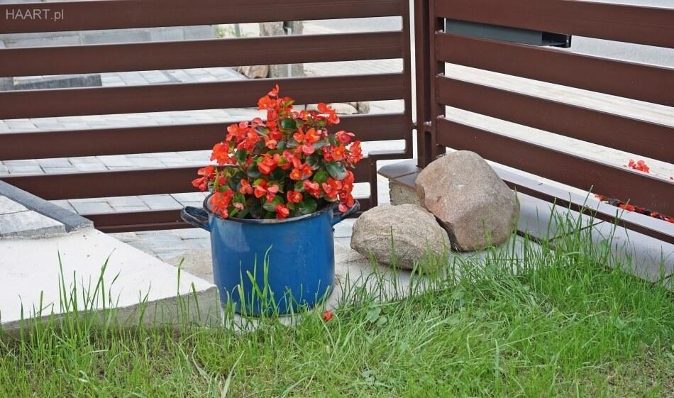 stare garnki w ogrodzie jako doniczki na kwiaty, bratki