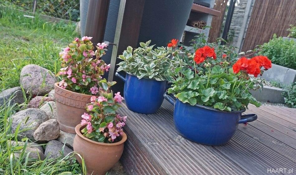 stare garnki w ogrodzie, doniczki na kwiaty