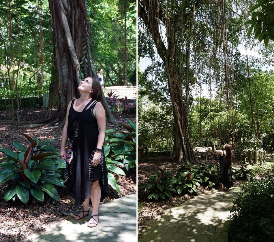 Hania Kozłowska singapurski park